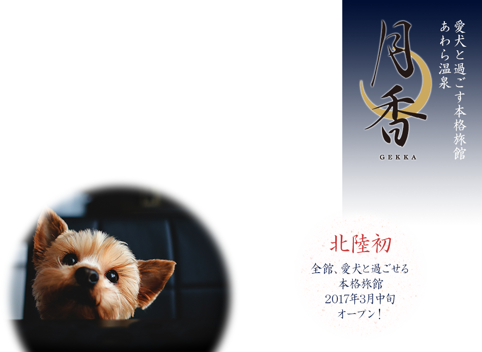 愛犬と過ごす本格旅館あわら温泉 北陸初 全館、愛犬と過ごせる本格旅館2017年3月中旬オープン!